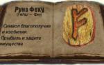 Значение руны Феху и ее магическая сила