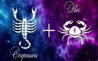 Рак и Скорпион — совместимость знаков зодиака