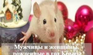 Характеристика мужчин и женщин, рожденных в год Крысы