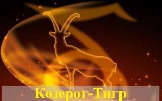 Козерог, рожденный в год Тигра: черты характера, карьера, семья