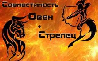 Овен и Стрелец: астрологическая совместимость знаков зодиака