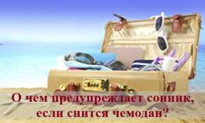 О чем предупреждает сонник, если снится чемодан?