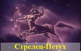 Характеристика Стрельца, рожденного в год Петуха