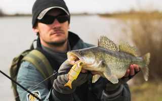 К чему мужчине снится рыба и рыбная ловля?