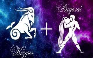 Козерог и Водолей: совместимость в любви и дружбе