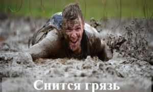 К чему обычно людям снится грязь?