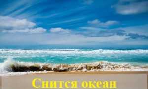 К чему снится океан по различным сонникам