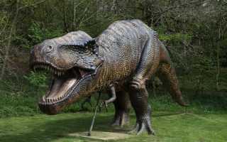 Толкование снов про динозавров, значение