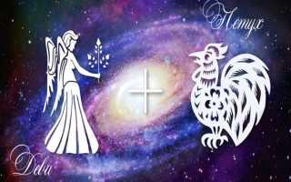 Гороскоп: характеристика Девы, рождённой в год Петуха