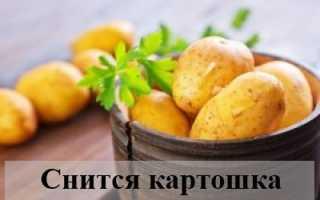 К чему снится картошка в различных вариациях и работе по выращиванию?
