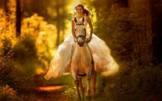 К чему снится скакать на лошади: значение сновидения