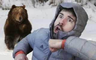 Что означает убегать от медведя во сне?