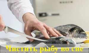 К чему снится чистить рыбу: расшифровка снов