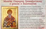 Сильные молитвы Спиридону Тримифунтскому: о деньгах, благополучии, работе и недвижимости