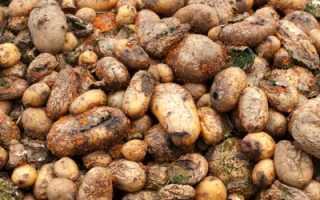 К чему снится мешок картошки: толкование по соннику