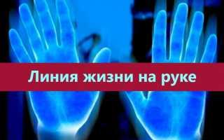 Линия жизни на руке и ее значение в хиромантии