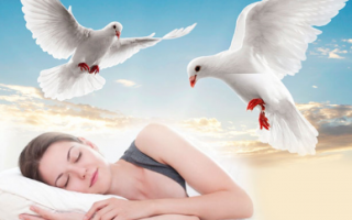 К чему снится белый голубь при разных обстоятельствах мужчине и женщине?