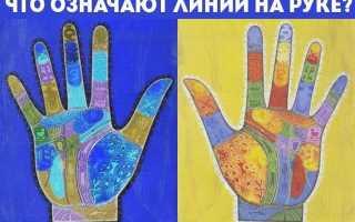 Начинающему хироманту: читаем рисунок на ладони