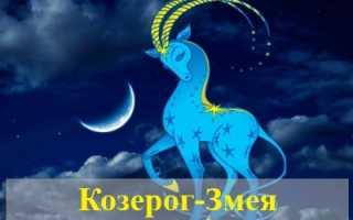 Характеристика Козерога, рожденного в год Змеи