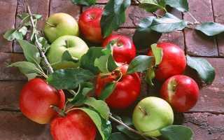 К чему снятся яблоки?