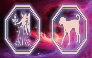 Дева-Собака: характеристика мужчин и женщин