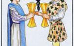 Таро Двойка Кубков: значение карты, толкование сочетания в раскладах