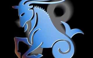 Козерог, рожденный в год Быка — характеристика