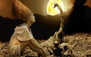Женщина-Скорпион: характеристика знака зодиака, совместимость в браке и любви