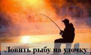 Ловить рыбу на удочку во сне — толкование известных сонников