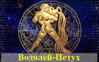 Водолей, рожденный в год Петуха: гороскоп для мужчин и женщин