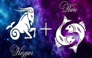 Козерог и Рыбы: совместимость в любви, семейной жизни, дружбе, работе