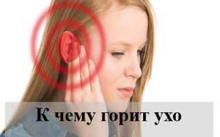 К чему горит левое или правое ухо у человека, народные приметы