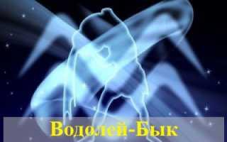 Водолей-Бык: особенности знака, совместимость с другими представителями восточного гороскопа
