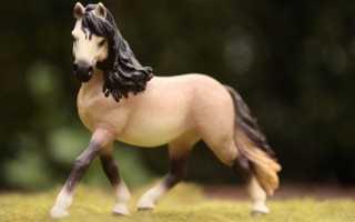 Что значит фигура лошади в гаданиях на кофейной гуще?