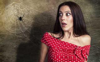 К чему снятся пауки большие и маленькие?