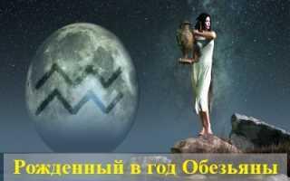 Водолей, рожденный в год Обезьяны: характер, любовь и карьера