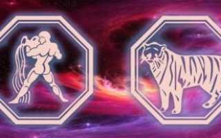 Водолей-Тигр: характеристика женщины и мужчины