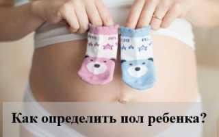 Как определить пол ребенка — народные приметы и простые методы