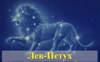 Лев в год Петуха: характеристика мужчины и женщины в любви и деловых отношениях
