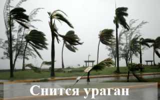 Что предвещает сновидение, в котором снится ураган?