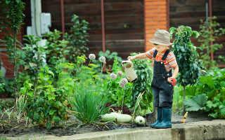 К чему снится огород: толкование сонников