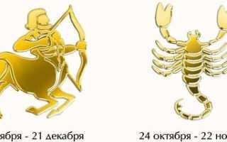Скорпион и Стрелец: совместимость женщин и мужчин в любовных и дружеских отношениях