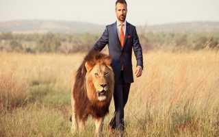 Характеристика мужчины-Льва в любви и отношениях