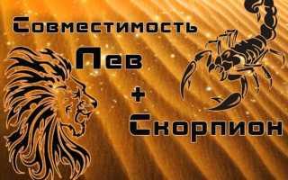 Лев и Скорпион: совместимость знаков зодиака