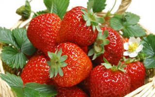 Толкование в сонниках: к чему снится ягода земляника