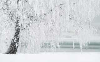 Толкование сновидений со снегом