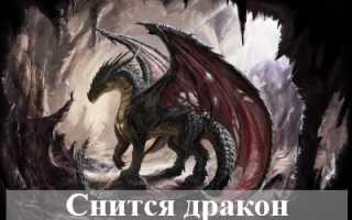 К чему снится дракон: толкование по сонникам