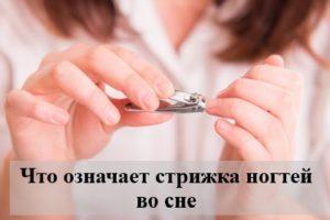 Что означает стрижка ногтей во сне — толкование известных сонников