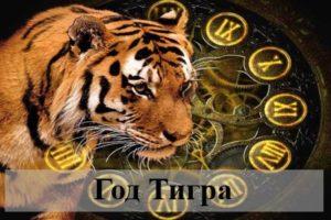 Год Тигра: характеристика женщин и мужчин