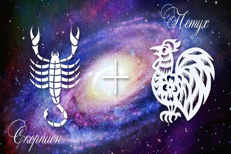 Характеристика Скорпиона-Петуха по западному и восточному гороскопам